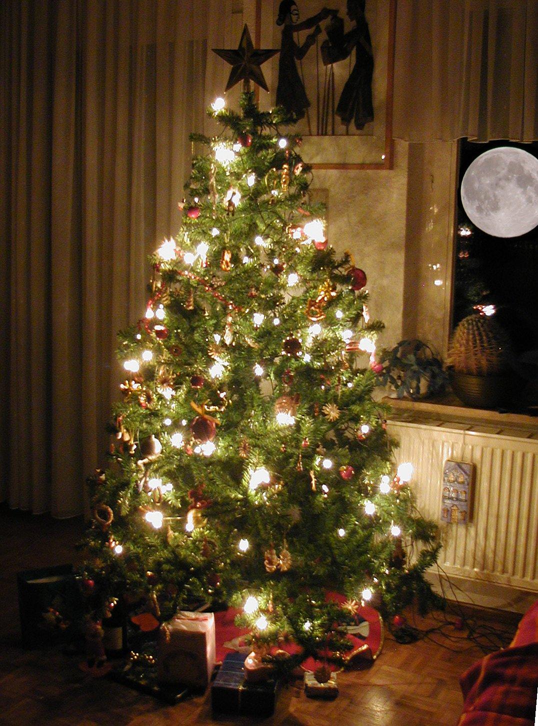 Haldoklom - egy karácsonyfa levele - Középsuli - magazin ... - photo#39