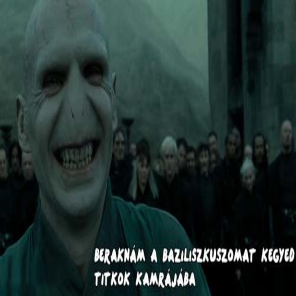 _gy-udvarol-Voldemort_converted_converted