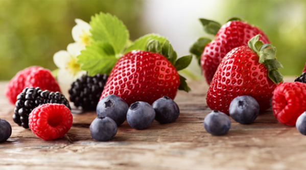1.0_OurBerries_header_01