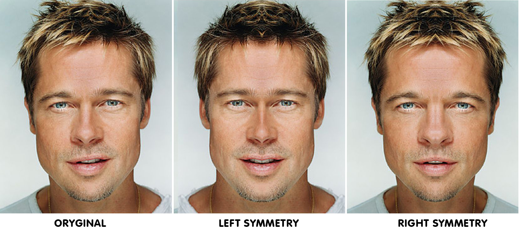 faces-photoshopped-to-reveal-perfect-symmetrical-features-22424