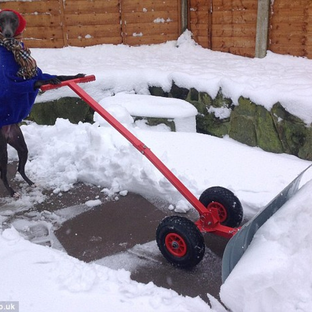 Valakinek a havat is el kell tolnia