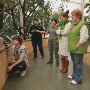 állatkert 6