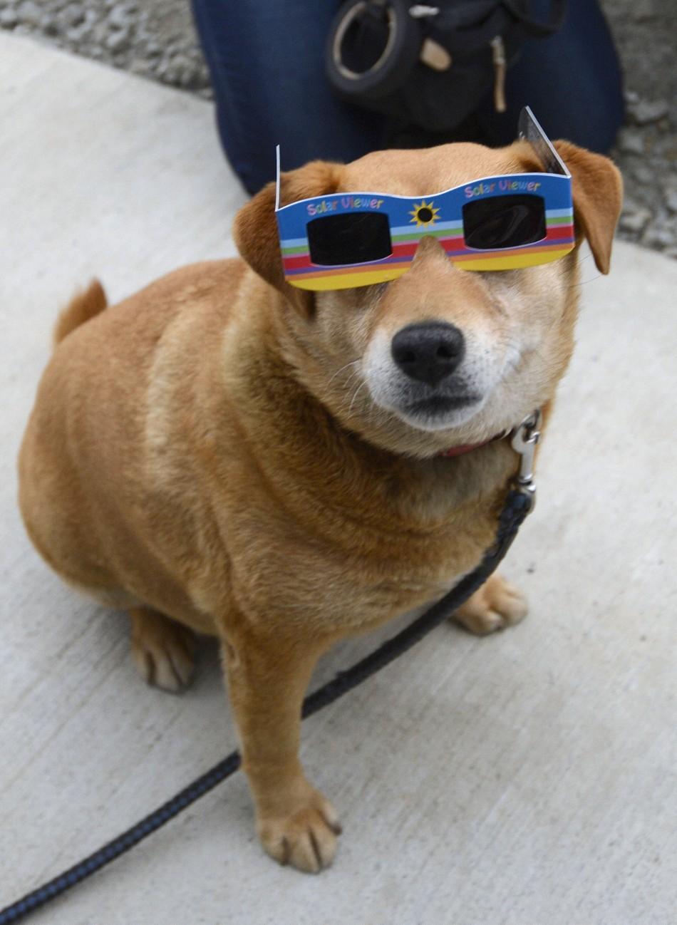 annual-solar-eclipse