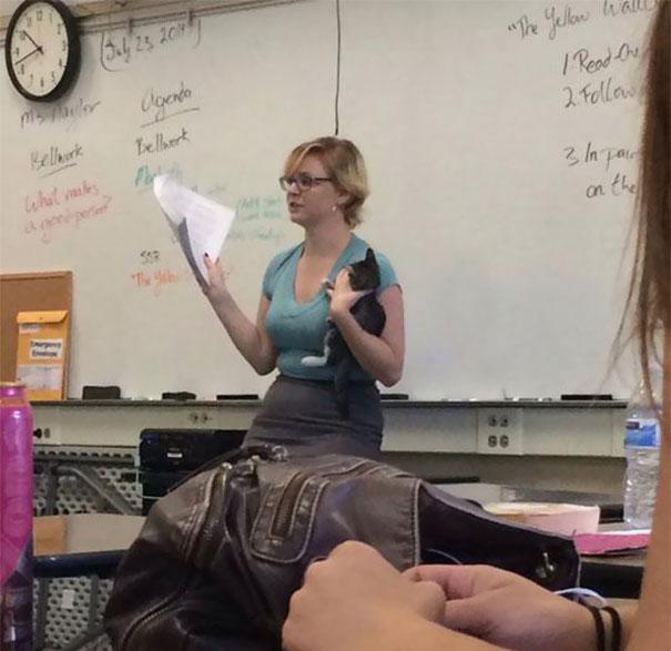 awesome-teachers-funny-40__605