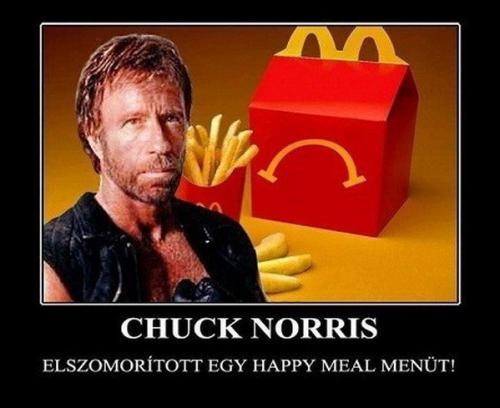 chuck-norris (1)