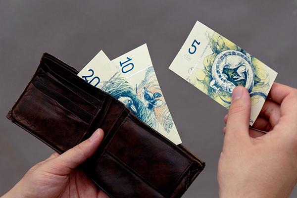 Fiktív euró tervek, Barbara MA diplomamunkája