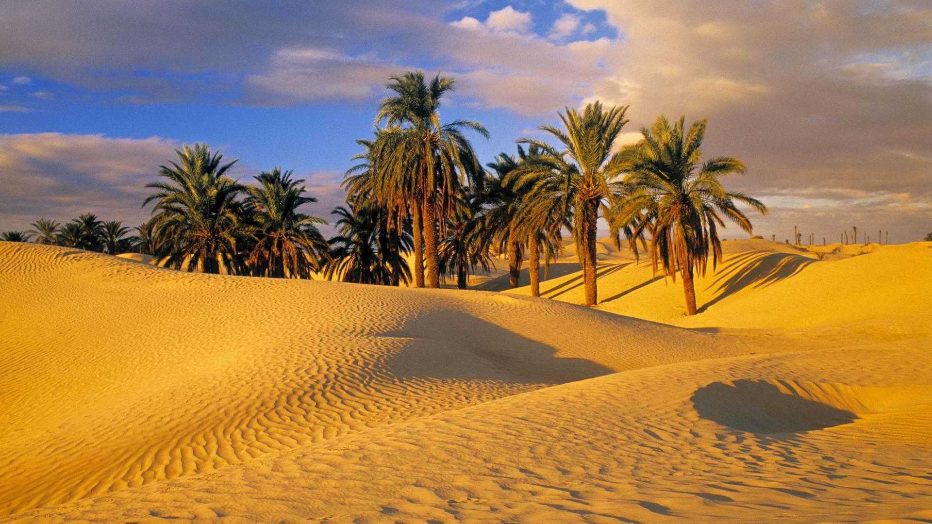 meleg szex sivatagban hogyan kell elvégezni a csapdákat