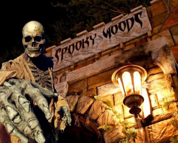 Spookywoods-580x464