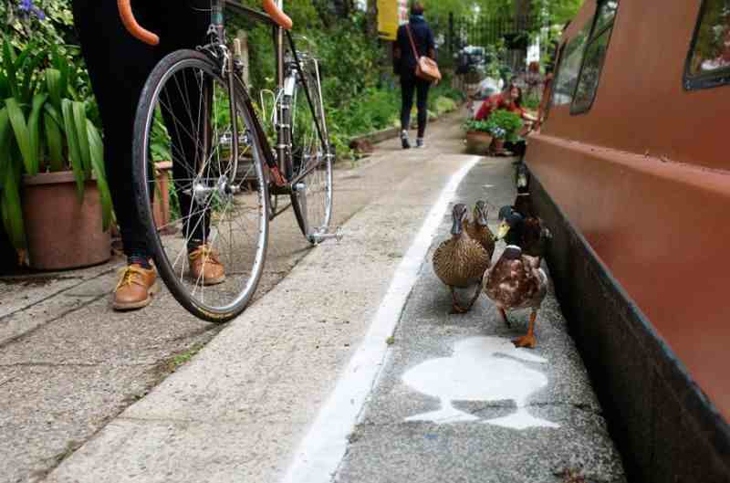 lane-duck-path-london-sharethespace-2-800x529