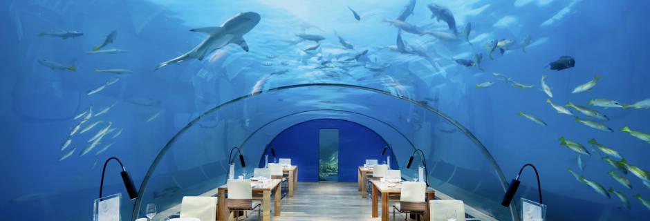 conrad-maldives-rangali-island-31710613-1432825548-WideInspirationalPhoto