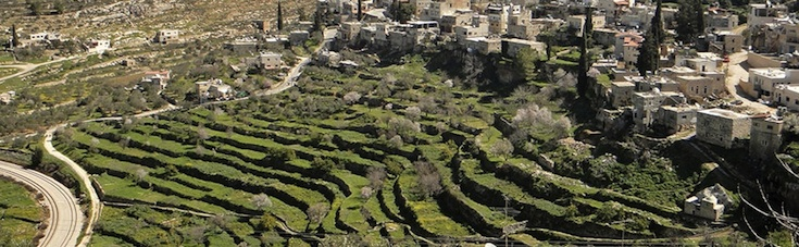 Battir - Palesztina