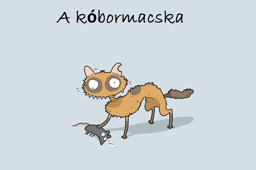 cattypes-007__880