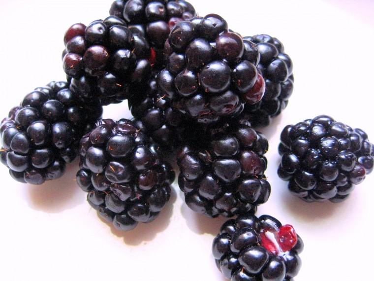 blackberries1sa