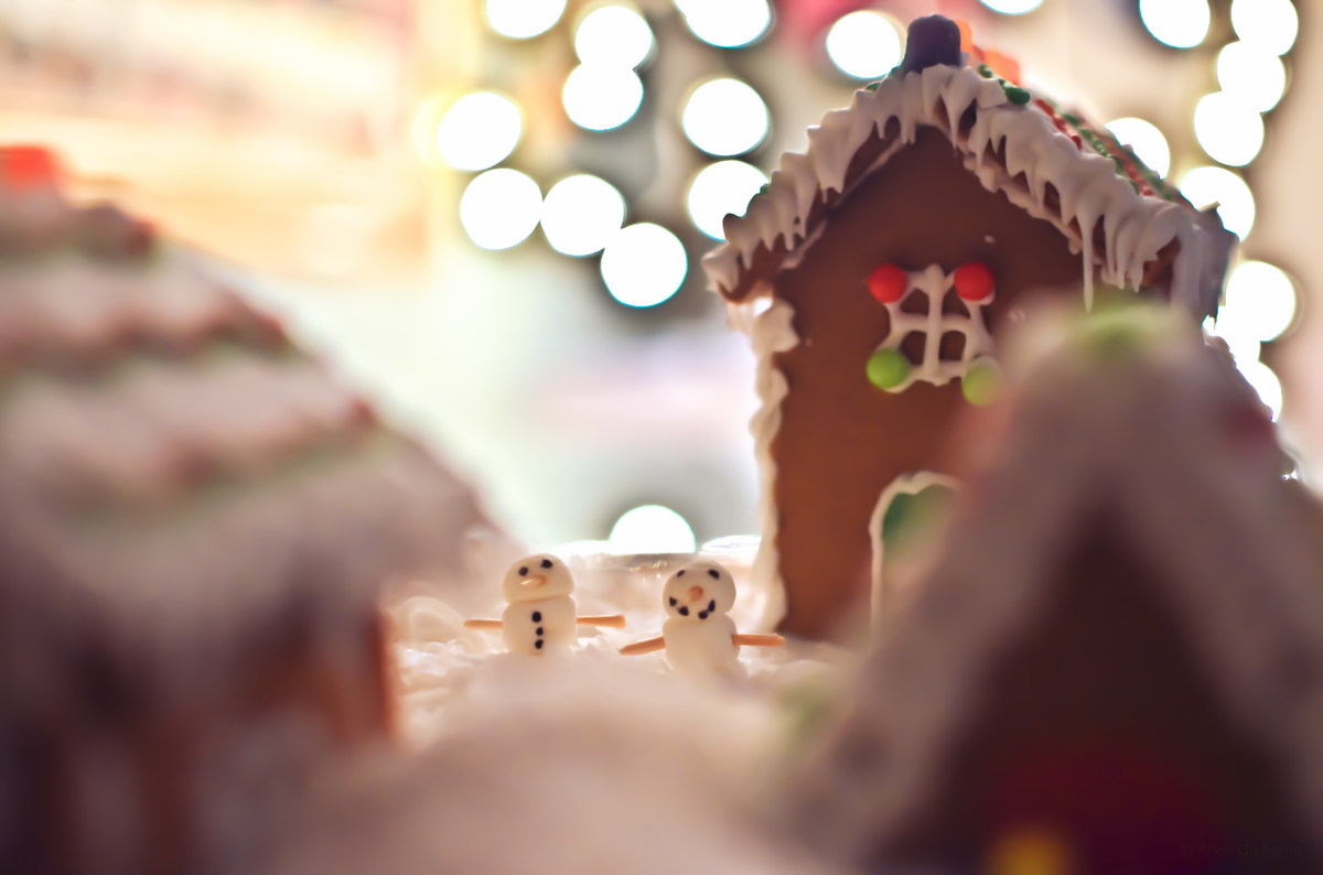 Christmas-Photography-Tumblr