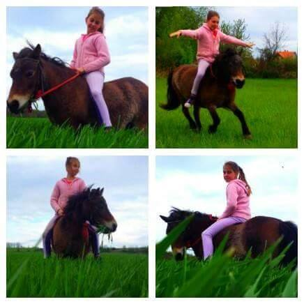 Horváth Cintia és lova