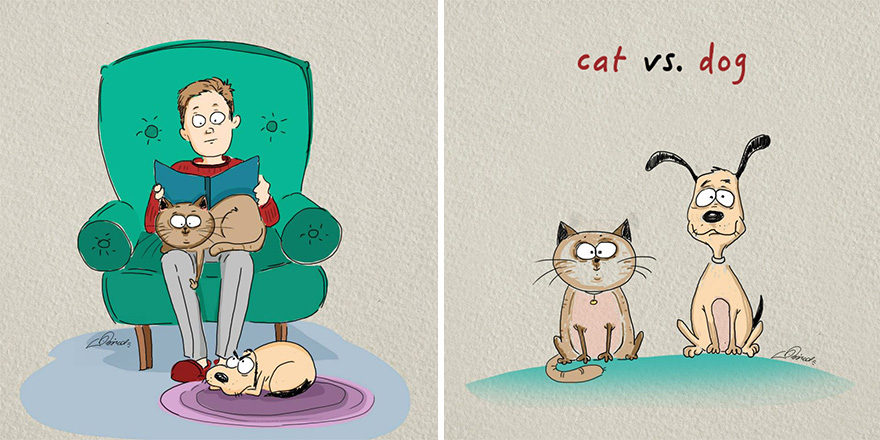 cats-vs-dogs-funny-illustrations-bird-born-1