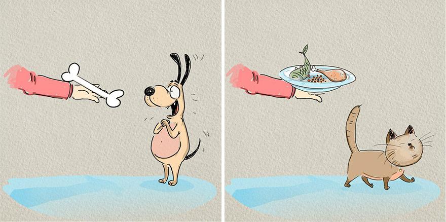 cats-vs-dogs-funny-illustrations-bird-born-3