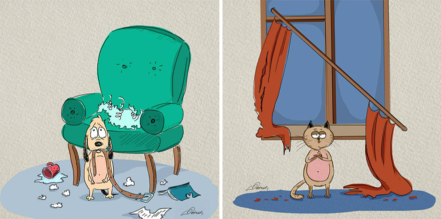 cats-vs-dogs-funny-illustrations-bird-born-7