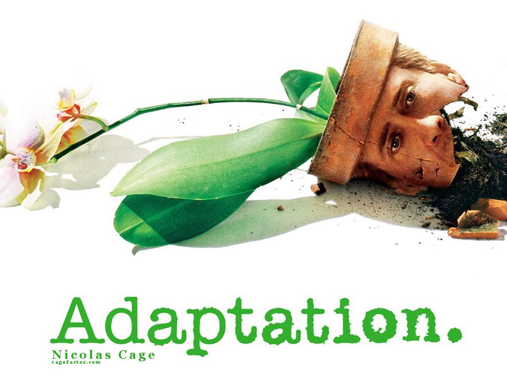 adaptation1_1024