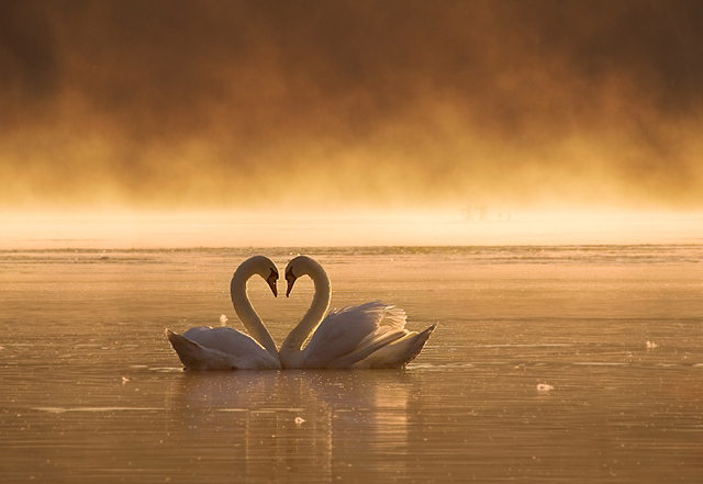 beautiful-moments-of-love-photography-32