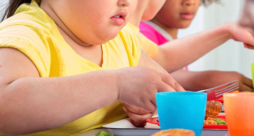 111115_lb_obese-kids_free